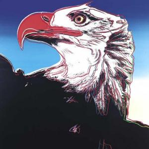 Bald Eagle on Canvas