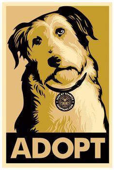 Shepard Fairey, Adopt Gold