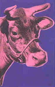 Cow - pink on blue background