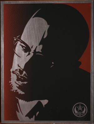 Shepard Fairey, Malcolm X on Metal