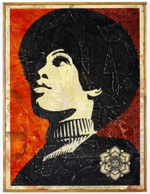 Shepard Fairey, Panther Power HPM on Wood