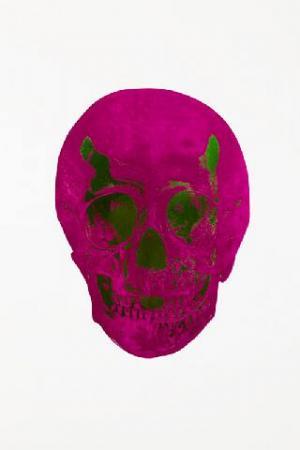 Fuchsia Pink/Lime Green Skull