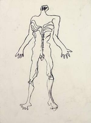 Anatomy Five